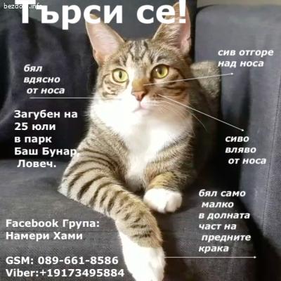 Моля, изпратете до хора от Ловеч!  https://www.facebook.com/