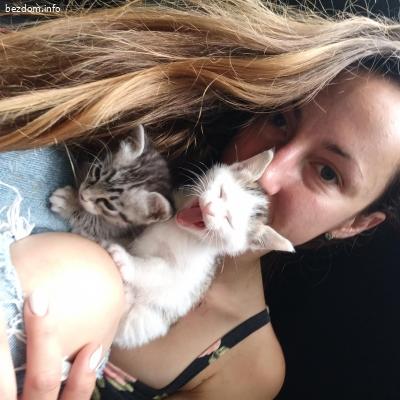 Подарявам микро котета
